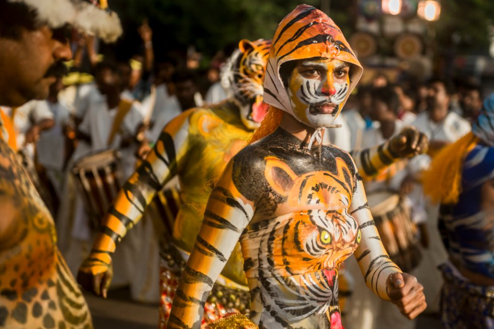 nicolas-veracierta-la-fiesta-de-los-tigres